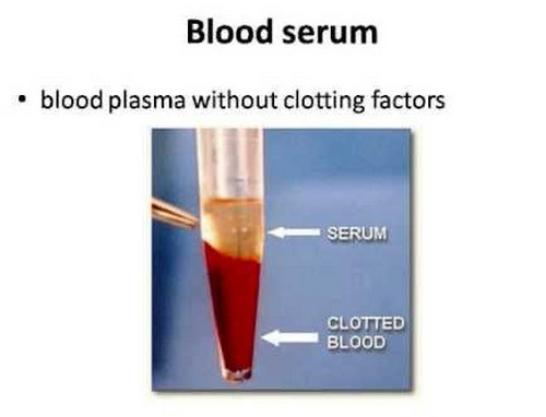 Difference between Plasma and Serum
